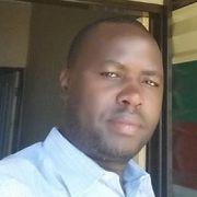 BoldZimbo